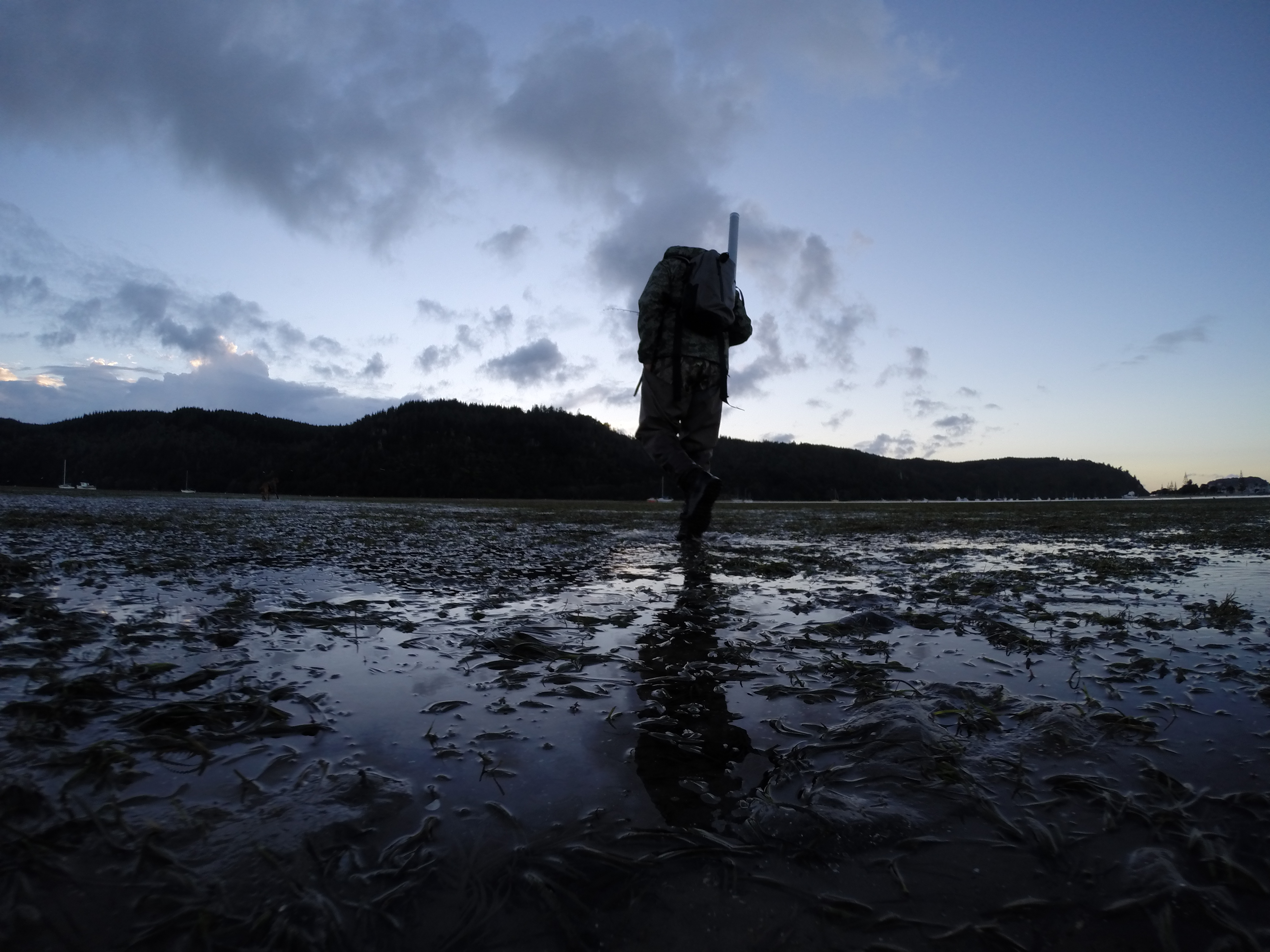 Is dawn the best time to fish active angling new zealand for What is the best time to fish