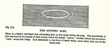 Spotted ring