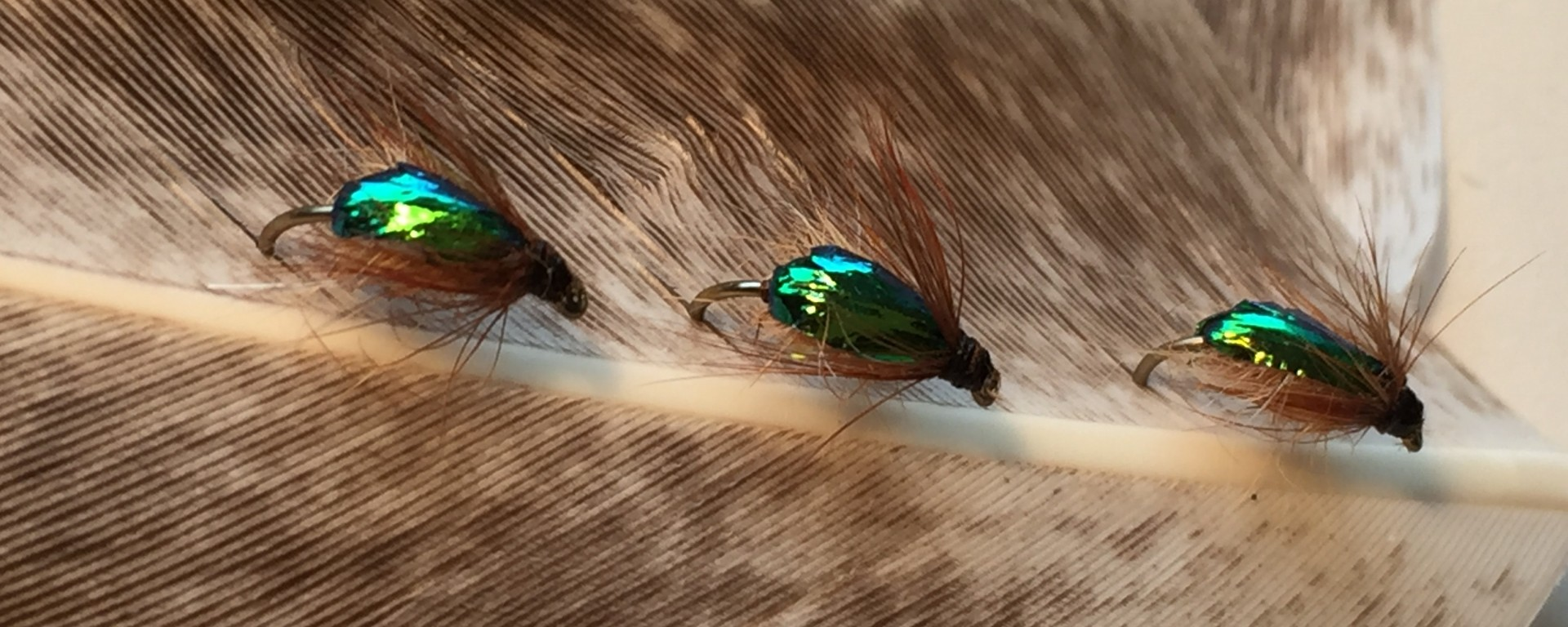 Fly tying on a tight budget active angling new zealand for Fly fishing tying