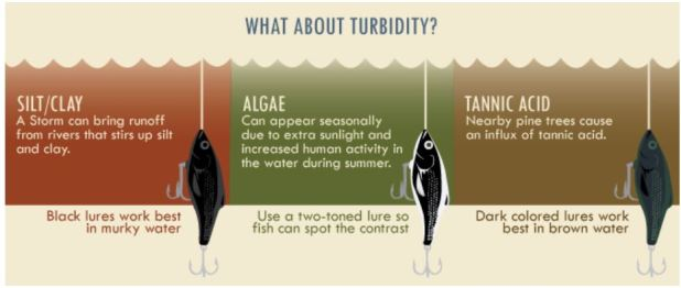Lure colour & turbidity