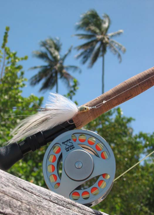TRopical reel and fly