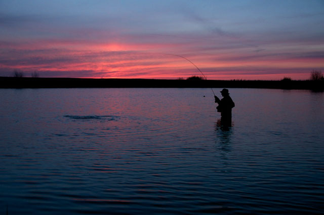 evening-trout-hughes-midcurrent