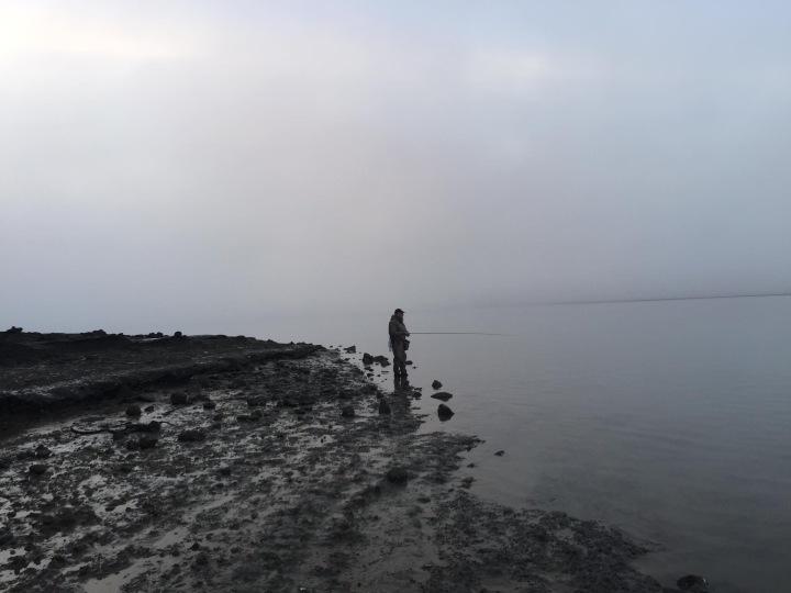Fog - swirling